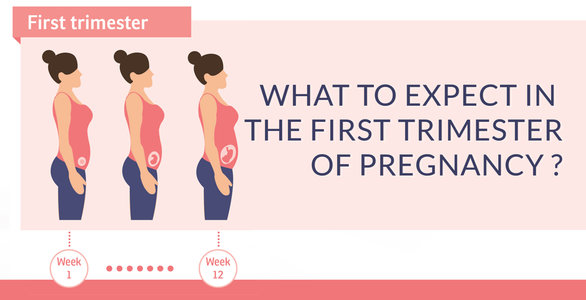 WHAT TO EXPECT IN THE FIRST TRIMESTER OF PREGNANCY